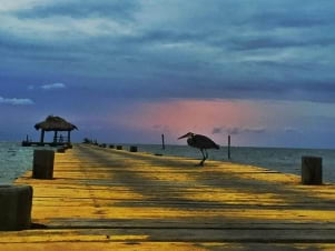 Beautiful dusk photo in Long Cay.