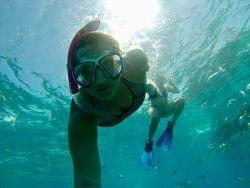A photo of Snorkeleras around Marathon in the Florida Keys