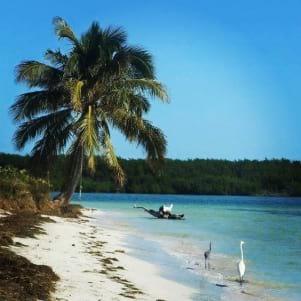 Beautiful beach in Big Pine Key.