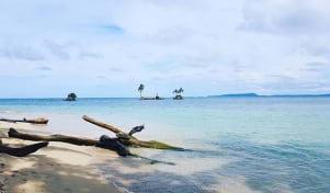 The blue water looks amazing in Bocas del Toro.