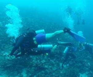 Wonderful underwater shot in Bonaire.