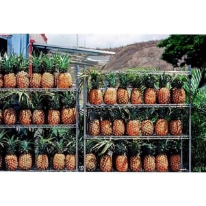 What's better than homegrown fresh pineapple in Hawaii?