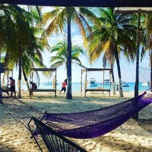 Hammock living under the palms trees is so Isla Mujeres!