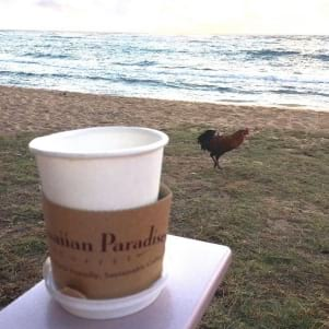 Coffee by the ocean and roosters in Kauia