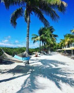 Siesta time in Key West!
