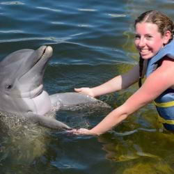 Girl holding the Flippers of a Bottlenose dolphin Marathon!