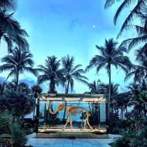 A Incredible Hotel on Miami Beach!