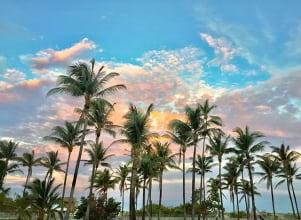 Miami Beach at Twilight.