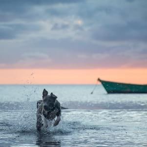 Splashing around in the cool waters of Molokai.