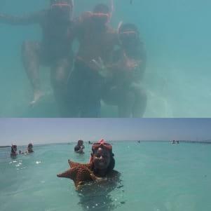 Having fun with a starfish in Nassau.