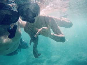 Perfect underwater shot in Oahu.