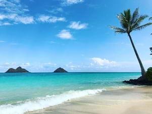Amazing beach in Oahu.