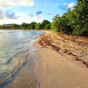 St Croix US Virgin Island is literally a paradise.