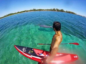Paddle boarding on a beautiful day in Miami.