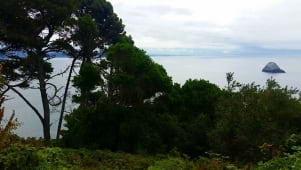 A pretty amazing view in Trinidad.